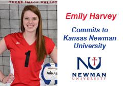 Emily Harvey - Kansas Newman