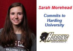 Sarah Morehead - Harding